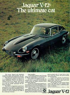 1972 Jaguar 2+2 V-12 Coupe