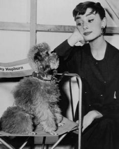 Audrey Hepburn with her poodle.--can't wait til these types of Poodle hairstyles come back in style!