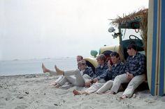 Beach Boys from Ken Veeder photo shoot at Paradise Cove in Malibu, California