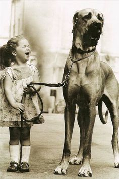 Little girl and her great Dane pal • original source not found