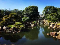 Nijo Castle 🏰 #japan #japantrip #japanphoto #japantravel #kyotosushi #kyoto #kyotojapan #kyototrip #kyotocity #travel #travelphotography #traveling #travelgram #traveler #photography #photoshoot #photograpy