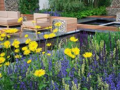 High-contrast plantings, using opposites on the color wheel (yellow and purple), create a vibrant look and play off the neutral tones of the hardscaping and furniture.