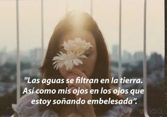 frases-Alfonsina-7