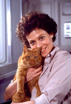 """Sigourney Weaver as Ellen Ripley with Jonesy the Cat in """"Alien"""" Alien Films, Aliens Movie, Aliens 1986, Celebrities With Cats, Celebs, Sigourney Weaver, Actrices Hollywood, Cat People, Mundo Animal"""