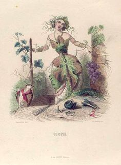 Vigne, J. J. Grandville's Les Fleurs Animees.  (1847).  Also necessary.  I love the tipsy bird.