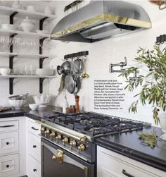 I don't understand the popularity of open shelving in kitchens. Unless you are very neat & a minimalist, they seem so impractical. Cheaper, yes. Hey, maybe that's the reason! You spent all your money on this fancy stove & only had enough left for base cabinets!