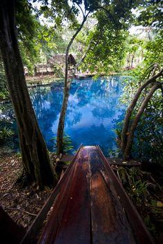 Dive in! Blue hole on Espiritu Santo Island, Vanuatu. #dotw