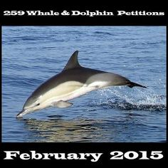 259 #Whale & #Dolphin petitions to sign & share (Compiled by The #Ocean Project Admin team). https://www.facebook.com/theocepro/photos/a.463629410319895.125670.455918657757637/1054735957875901/?type=1&theater #SeaShepherd #defendconserveprotect