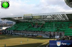 Tifo from #France #Saint-Etienne #Green Angels
