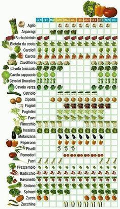Garten Creative Vegetable Garden Ideas And Decorations # Vegetable Garden Planning, Vegetable Garden Design, Vegetable Gardening, Potager Palettes, Herb Garden Design, Growing Vegetables, Hydroponics, Hydroponic Gardening, Garden Beds