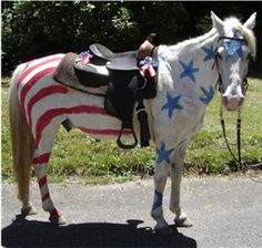 Patriotic horse Halloween costume...too cute! that's my twin sister's horse, spook