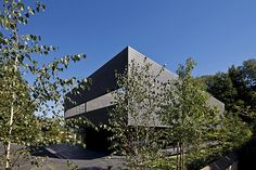 Lussi Halter twin modern houses architecture
