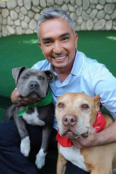 Cesar Millan and his pack leaders: Daddy and Junior