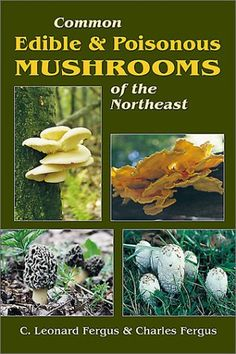 Santas Tools and Toys Workshop: Book: Common Edible & Poisonous Mushrooms of the Northeast