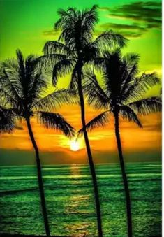Excited to share this item from my shop US Seller Tropical Sunset Green Palm Trees Ocean Beach Diamond Painting Kit Full Drill Round Drills Free SH Beautiful Sunrise, Beautiful Beaches, Sunset Photography, Travel Photography, Life Photography, Landscape Photography, Photography Ideas, Nature Pictures, Sunrise Pictures