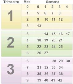 I always wondered how exactly to work this out! Pregnancy chart by trimester… Pregnancy Chart, Pregnancy Calculator, Trimesters Of Pregnancy, Pregnancy Tips, Months Of Pregnancy, Pregnancy Trimester Chart, Pregnancy Timeline, Pregnancy Journal, Baby Tips