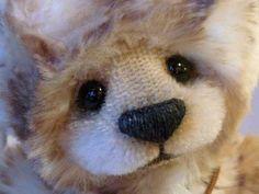 silvia gilles bears - Google Search