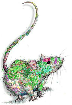 This is wonderful. It's earthy and rattie!:)