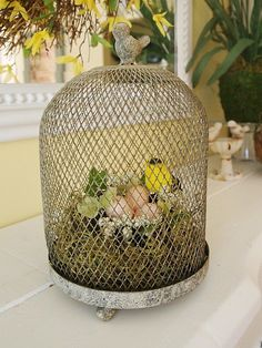 wire cloche with nest on mantel at A Cultivated Nest