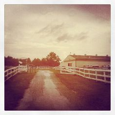 Paddock Place barn driveway. @paddockplace1