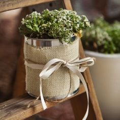 Take some old paint cans and turn them into flower pots. Great idea for all the leftover paint cans! (Big and small cans)