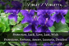 Violet: Protection, Luck, Love, Wish // Violetta: Protezione, Fortuna, Amore, Lussuria, Desideri | L'antro della Magia http://antrodellamagia.forumfree.it/?t=56749041