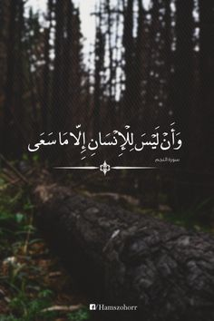 This is a islamic whatsapp wallpaper Quran Quotes Love, Beautiful Quran Quotes, Quran Quotes Inspirational, Beautiful Arabic Words, Islamic Love Quotes, Muslim Quotes, Religious Quotes, Words Quotes, Arabic Quotes