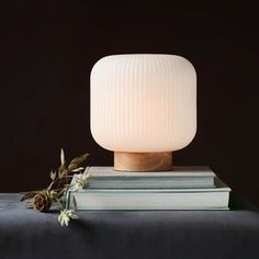Outdoor Table Lamps, Table Lamps For Bedroom, Table Lamp Wood, White Table Lamp, Bedside Table Lamps, Modern Table Lamps, Small Bedside Lamps, Light Table, Outdoor Lighting