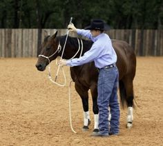 Teaching Your Horse to Yield the Forequarters with Clinton Anderson