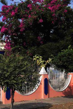 Colorful neighborhood, Mazatlan, Mexico