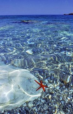 Cyclades, Greece Amazing clear water.. shutup ! Going on the list of places to visit on our honeymoon :)