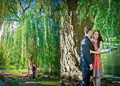 Engagement photos - Boston Public Gardens #summerengagements #boston #inlove http://briannaphotography.com/blog/?load/blog_detail/page/88457/item/1373/meaghan---brian---boston-engagement-photographer