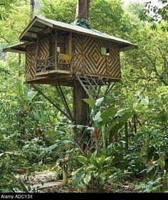 Image: Treehouse eco accommodation, Khao Sok National Park, Surat Thani, Thailand. (© Gary Dublanko/Alamy)