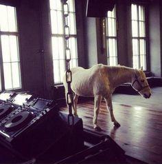 Trippin? White horse in panoramabar, berghain, berlin