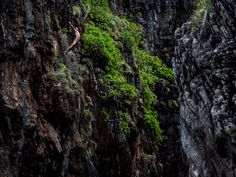 """The Red Bull Cliff Diving World Series.  Pictured here is """"The Gap"""", which is a natural small channel located between two giant rock formations in Wang Long Bay, in Krabi, Thailand. """"Southeastern Asia is just one of the most breathtaking places I've ever been to,"""" Colturi said."""