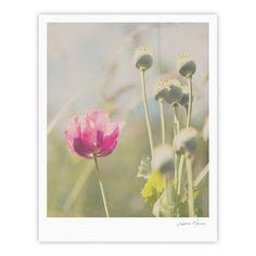 """Laura Evans """"Looking Up"""" Flower Fine Art Gallery Print"""