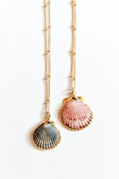 Inspire Necklace - Gifts for Ocean Lovers Seashells Seashell Jewelry Seashell Necklace Unique Jewelry One of a ki - jewelrydiy diy necklace Seashell Jewelry, Seashell Necklace, Shell Necklaces, Unique Necklaces, Diy Necklace, Initial Necklace, Gold Jewelry, Jewelery, Fine Jewelry