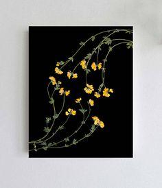 Pressed Flowers on Black Background - Yellow Flower Print - Lotus Flower - Birdsfoot Trefoil - Dark