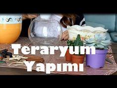 Mahmut Kirnik shared a video Terrarium Diy, Terrarium Wedding, How To Make Terrariums, House Plants Decor, Plant Decor, Flores Diy, Wie Macht Man, Terraria, 5 Minute Crafts