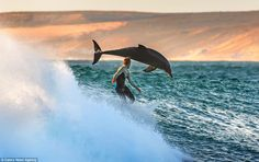 This stunning picture was capture by Matt Hutton who was just lining up the last shot of the day