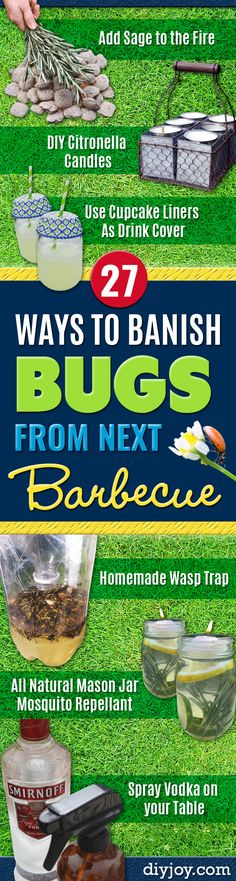 Best Ways to Get Rid of Bugs - Easy Tips and Tricks to Get Rid of Mosquitoes, Roaches, Ants, Fleas and Flies - DIY Ways To Exterminate and Elimiate Pests from Your Home and Yard, Picnics and Outdoor Barbecue http://diyjoy.com/ways-to-get-rid-of-bugs 27 Ways to Banish Bugs From Next Barbecue