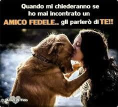 I love my dog so love yours to Love My Dog, Cat Love, Puppy Love, Dog Friends, Best Friends, Animals And Pets, Cute Animals, Amor Animal, Dog Heaven