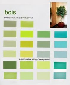 Des secteurs et des couleurs | Attention Blog Contagieux !! Couleur Feng Shui, Feng Shui For Beginners, Vestibule, Decoration, Lounge, Map, Yellow, Attention, Photos
