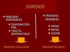 EGRESOS <ul><li>PERDIDAS  INSENSIBLES </li></ul><ul><li>PERDIDAS  </li></ul><ul><li>SENSIBLES </li></ul><ul><li>EVAPORACIÓ...