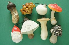 1pc SOFT Real Mushroom Charm (((Choose Number from 5th pic ))) AZ179