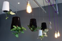 The Raft, cafe/bar/eatery in Tauranga. Interior design and product by Urban Lounge Interiors