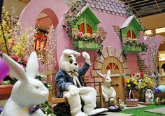 Easter bunny fight image