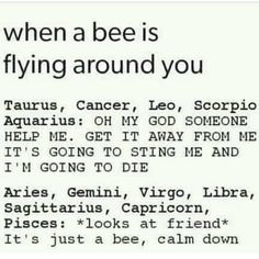 Cancer~ I'm not afraid of bees and I'm the only one who says to calm down. Bees are cool. Wasps tho......I be like GO AWAY