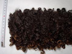 1.1oz/30g, Wensleydale locks, wensleydale curls, black curls, felting wool, spinning fiber, curly fleece, dolls hair, felting fiber, fleece