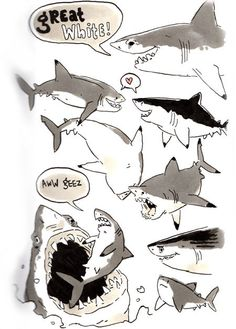 "sketchshark: "" Shark Week Sketchbookery Basking shark, bonnet head shark, and of course the Great White Shark. Animal Sketches, Animal Drawings, Cool Drawings, Sea Creatures Drawing, Alien Creatures, Illustrations, Illustration Art, Cartoon Sea Animals, Shark Art"